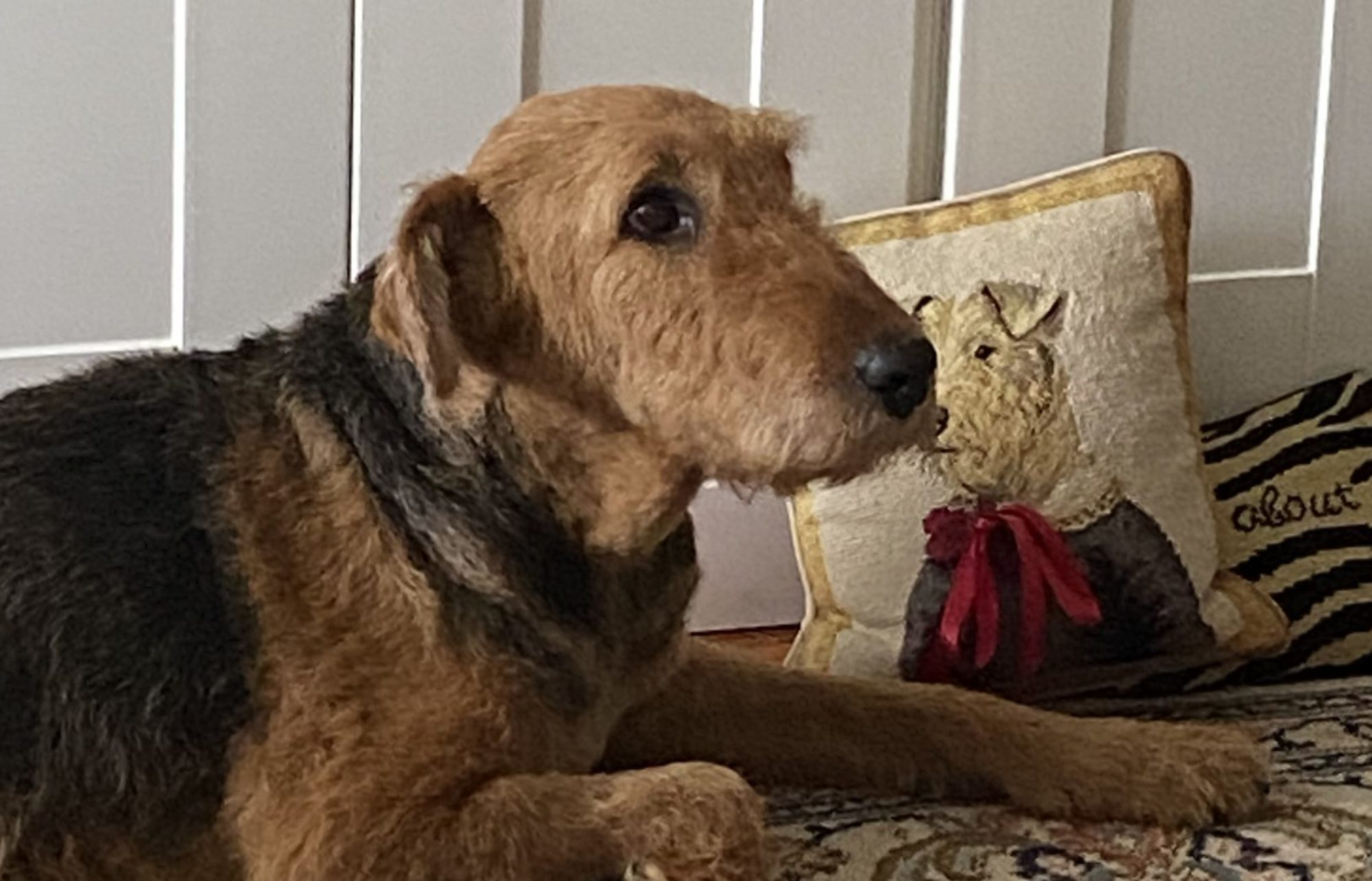 Airedale Productions